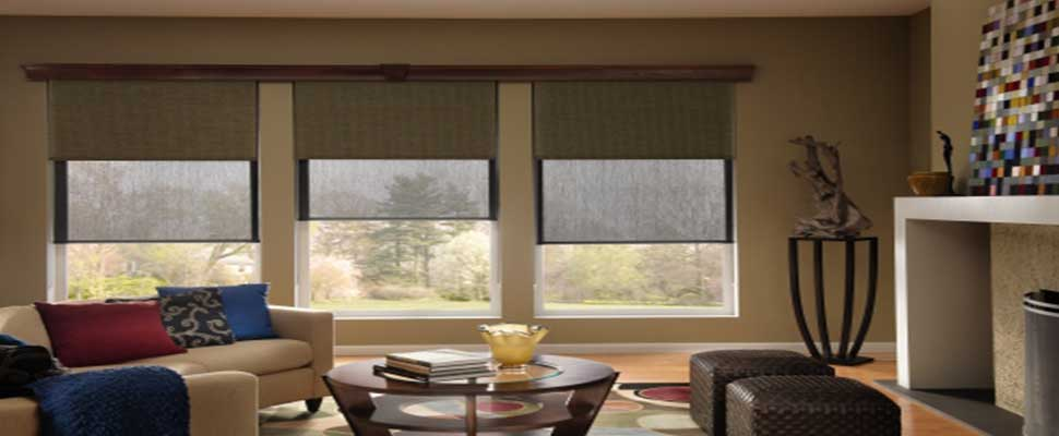 Automated-Motorized-Dual-Roller-Shades