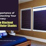 Importance of Protecting Your Privacy – The Blackout Cellular Shades