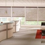 The Versatility of Fabric Roller Shades
