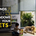 Window Blinds And Shades For Pet Safety – Zebrablinds