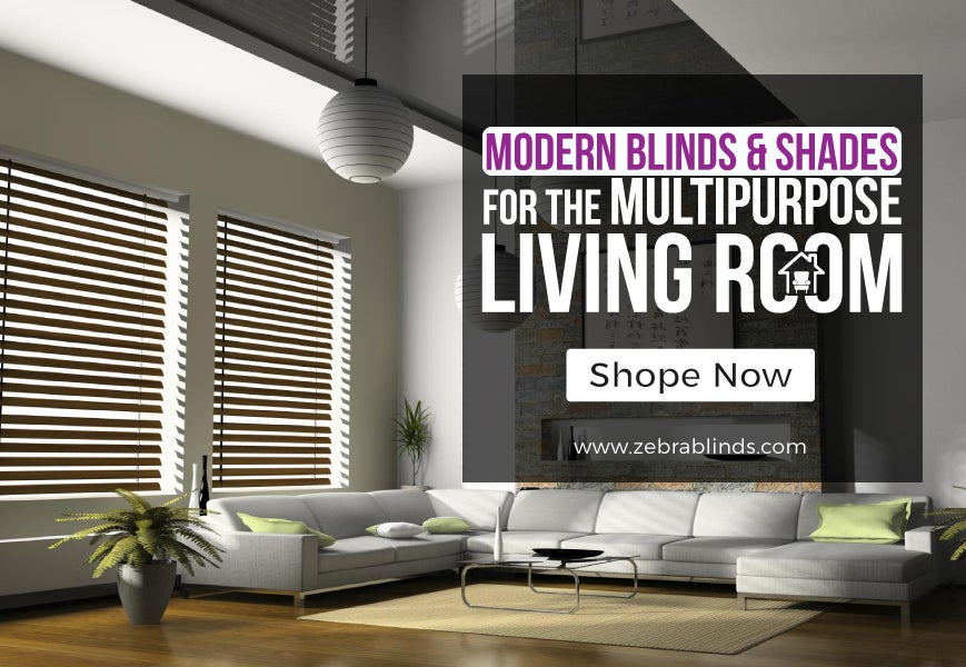 Modern Blinds and Shades of Living Rooms | ZebraBlinds