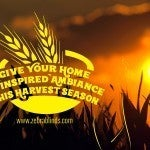 Give Your HomeAn Inspired Ambiance ThisHarvest Season