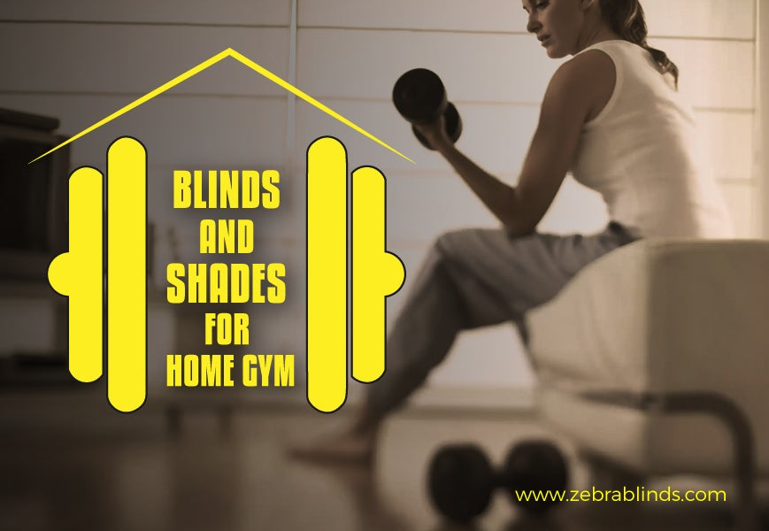 Window Blinds and Window Shades