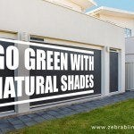 Go Green with Natural Shades
