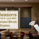 5 Reasons You'llFallIn Love With Motorized Blinds and Shades