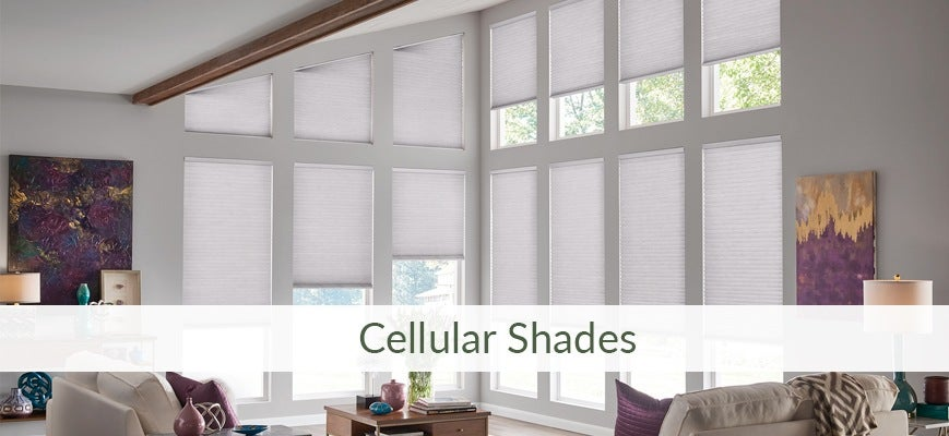 Spring Cleaning Ideas for Cellular Shades