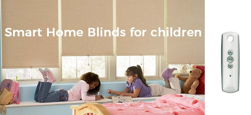 Smart Home Blinds