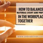 How To Balance Natural Light And Privacy In The Workplace Together