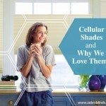 Cellular Shades and Why We Love Them