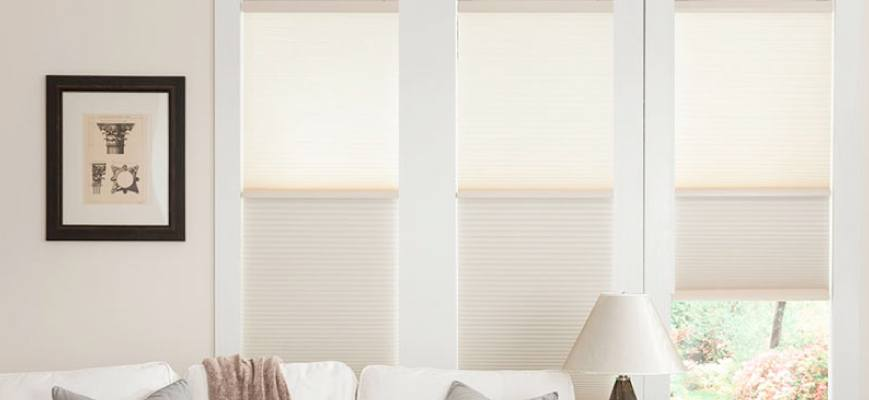 Cordless Day Night Cellular Shades