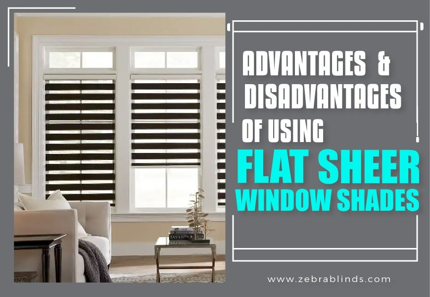 Advantages Amp Disadvantages Of Using Flat Sheer Window Shades
