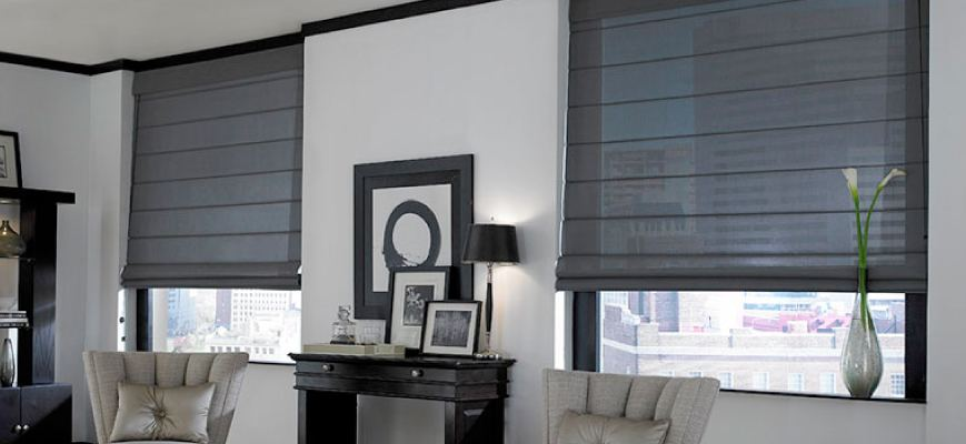 Unique Window Treatments - Blinds & Shades | ZebraBlinds