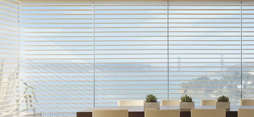 Horizontal Sheer Window Shades