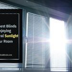 The Best Blinds for Enjoying Natural Sunlight in Your Room