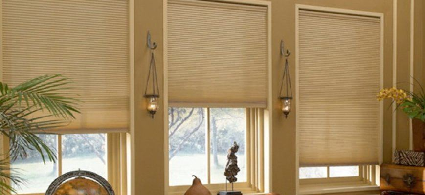 Light Filtering Cordless Cellular Shades