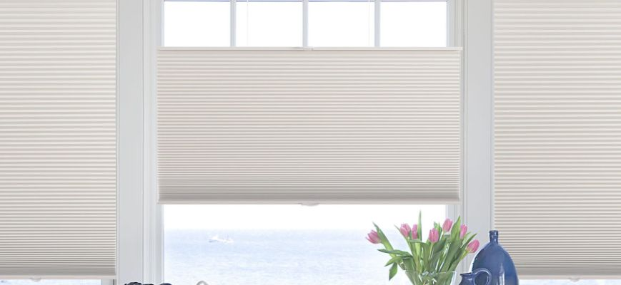 Top Down Bottom Up Cellular Shades Most Effective Window