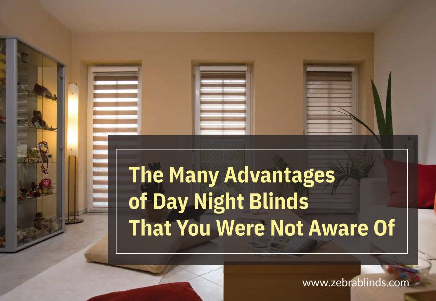 Advantages Of Day And Night Window Blinds That You Were