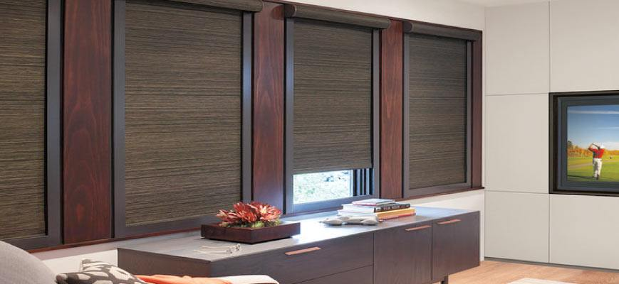 Blackout Cellular Shades for Home Theatre