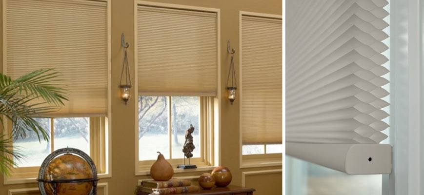 Double Cellular Shades