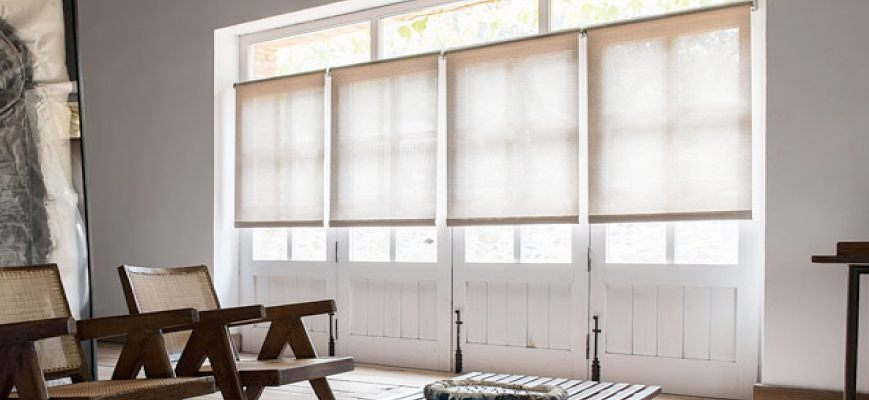 Shades That Let Light In But Keep Privacy Zebrablinds