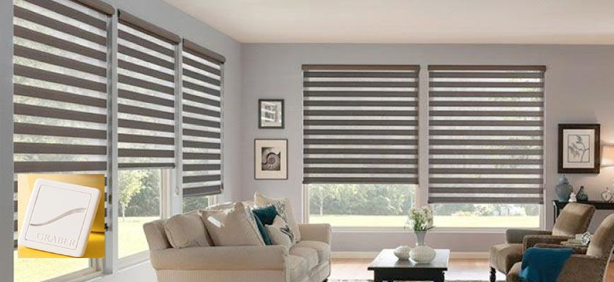 Zebra Motorized Sheer Shades