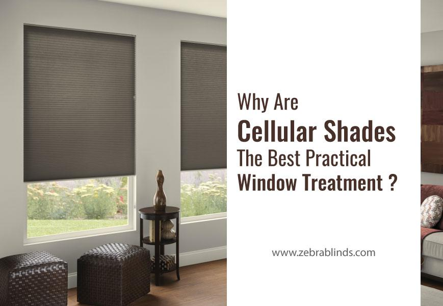 Best Practical Window Treatments