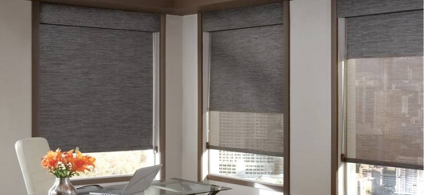 Dual Roller Shades