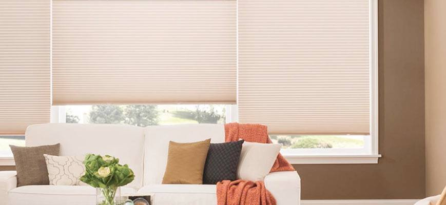 Pleated Shades for Living Room