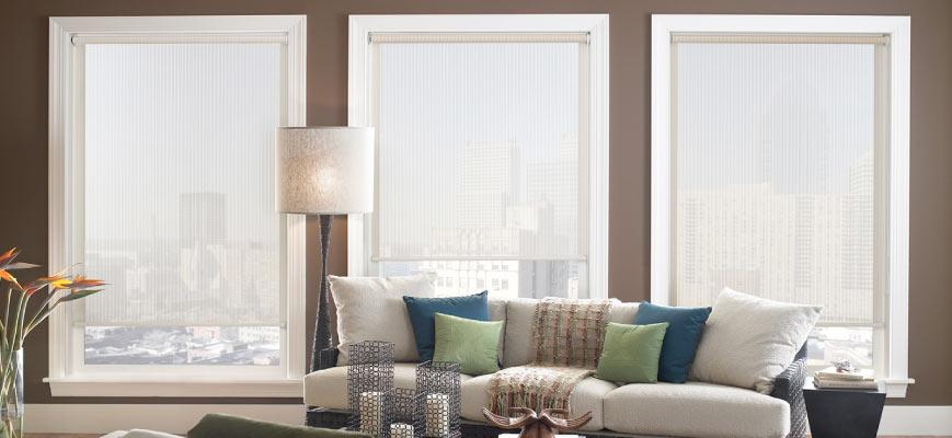 Roller Shades for Living Room