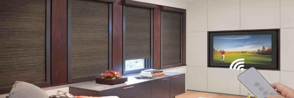 Motorized Blackout Shades for Media Room