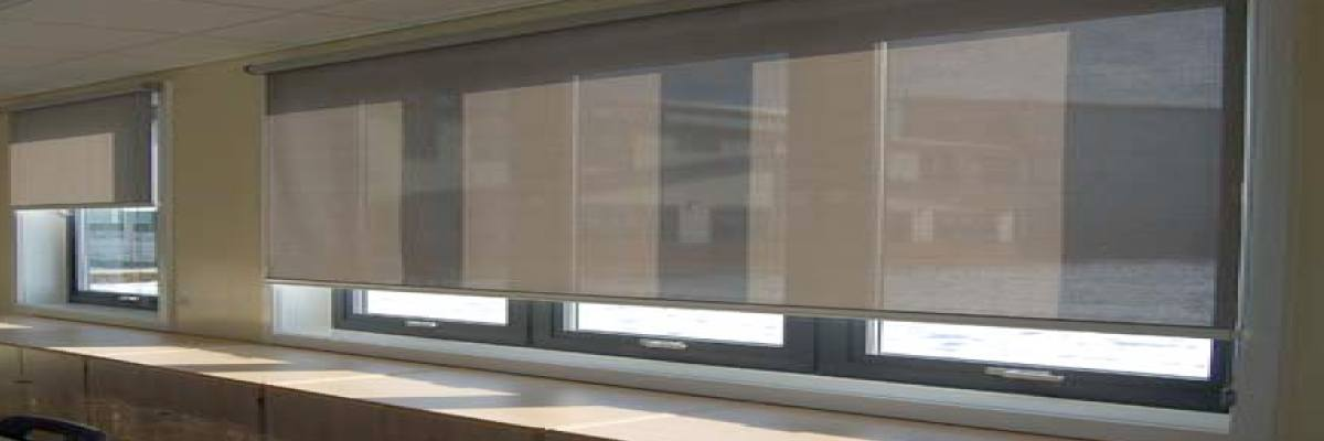 Roller Shades for Schools