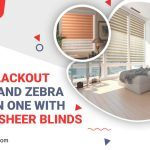 Get a Blackout Roller and Zebra Shade in one with Double Sheer Blinds
