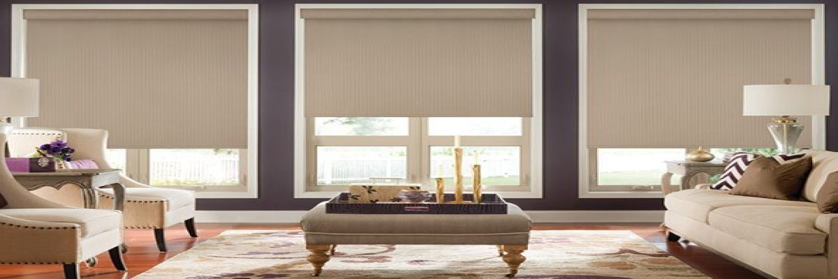 Blackout Roller Shades for Large Windows