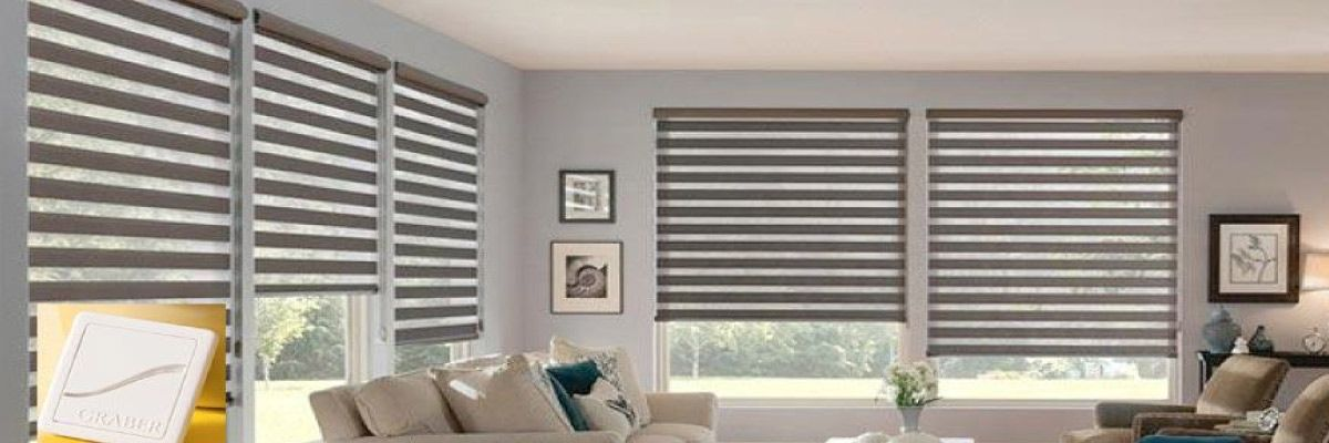 Smart Zebra Sheer Shades