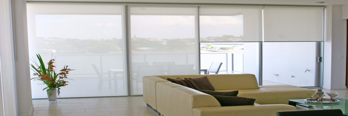 Roller Blinds for Apartment
