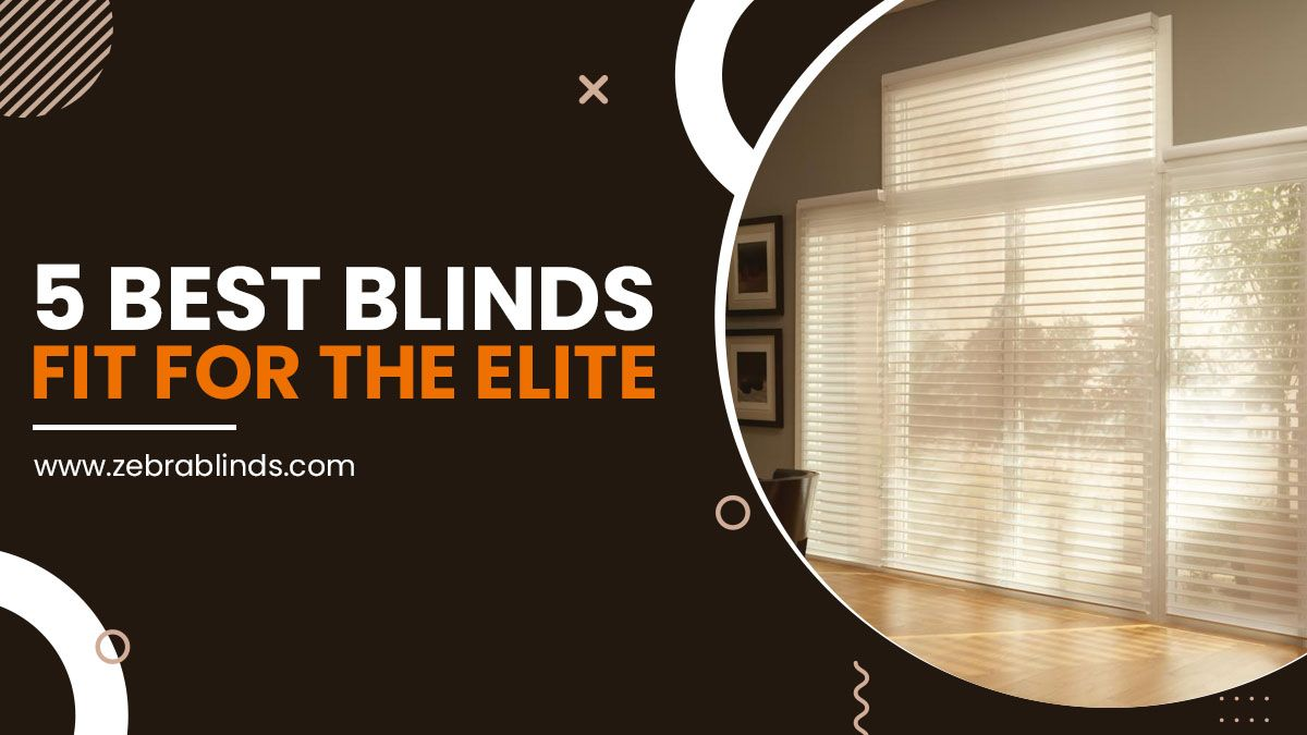5 Best Blinds Fit For The Elite