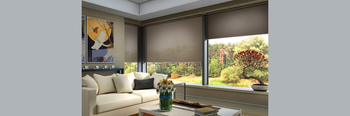 Motorized Cellular Window Coverings