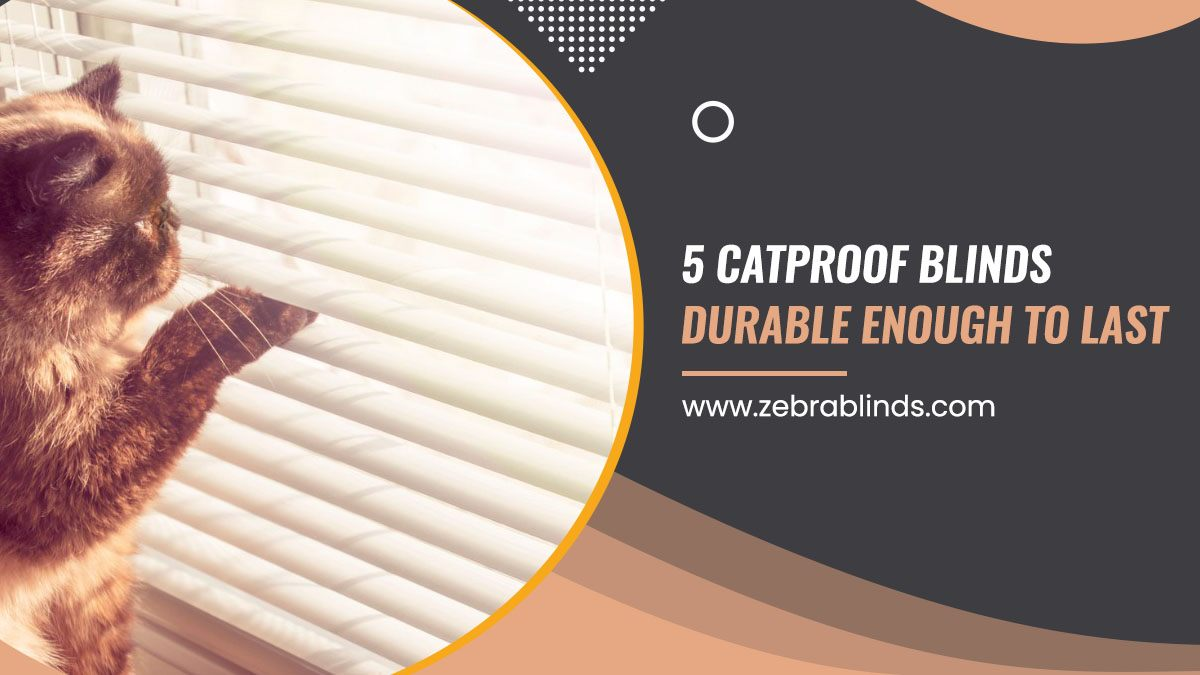 5 Catproof Blinds Durable Enough To Last