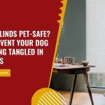 Are Your Blinds Pet-Safe? How to Prevent Your Dog from Getting Tangled In Your Blinds