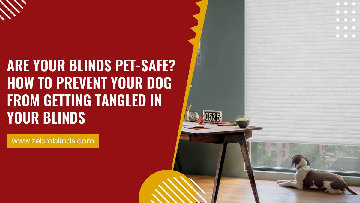 Are Your Blinds Pet Safe