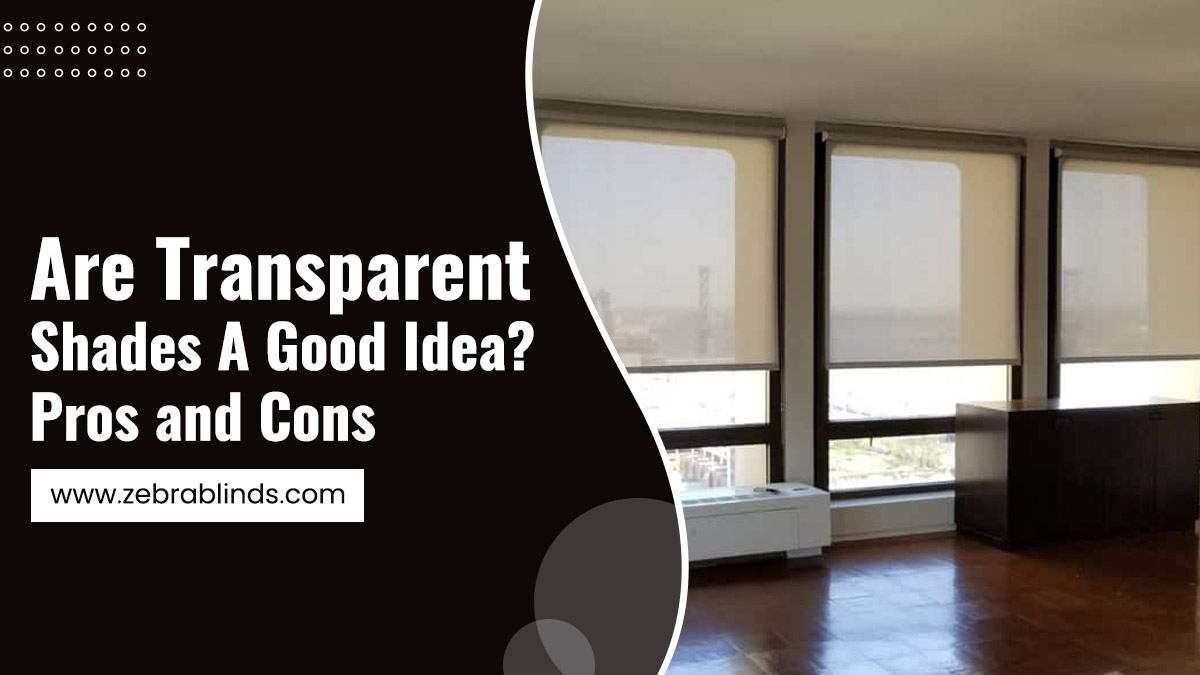Are Transparent Shades A Good Idea - Pros-and-Cons