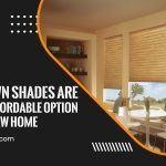 Why Crown Shades Are the Best Affordable Option for Your New Home