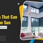 5 Blinds That Can Filter the Sun