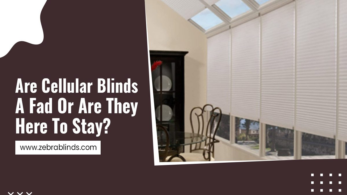 Are-Cellular-Blinds-A-Fad-Or-Are-They-Here-To-Stay