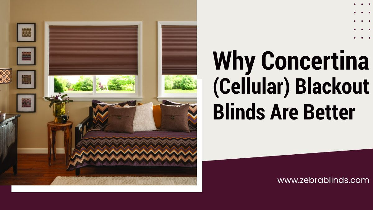Why-Concertina-Cellular-Blackout-Blinds-Are-Better