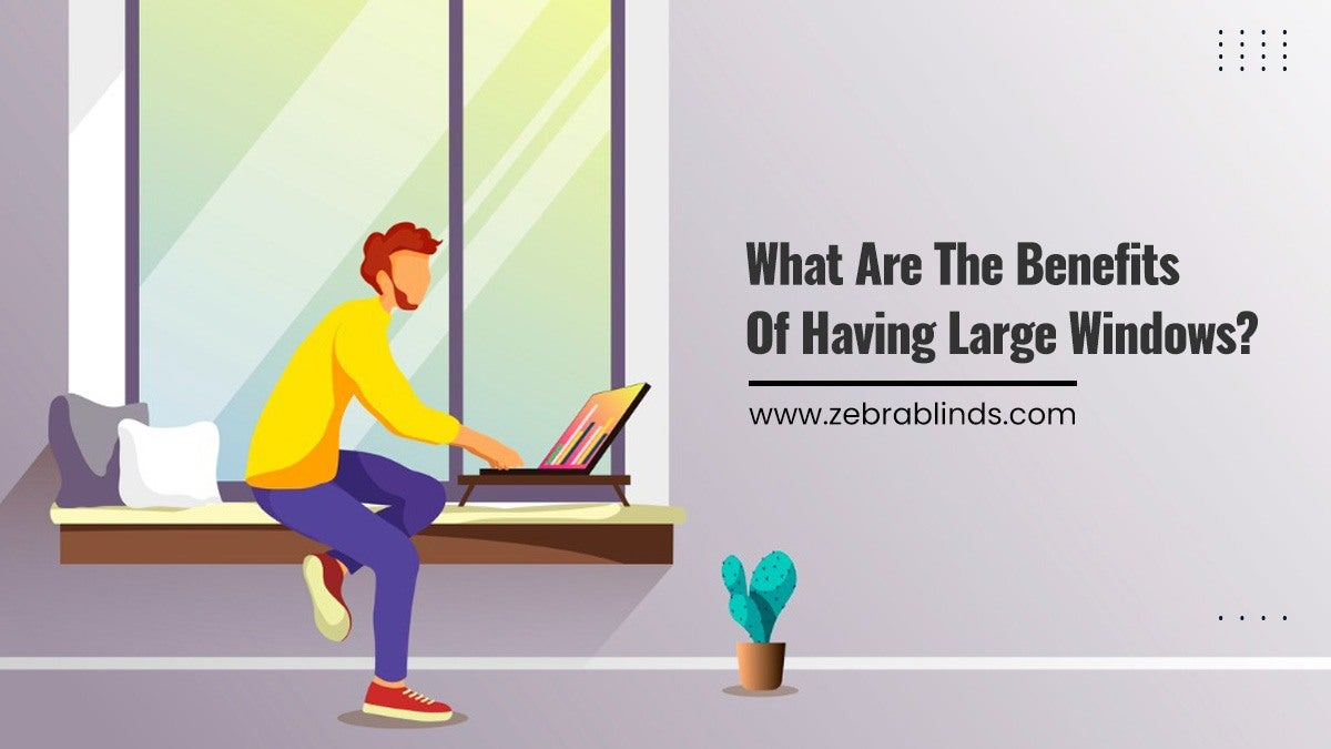 What Are The Benefits Of Having Large Windows?